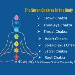 TOTLB 341 Align Your Chakras